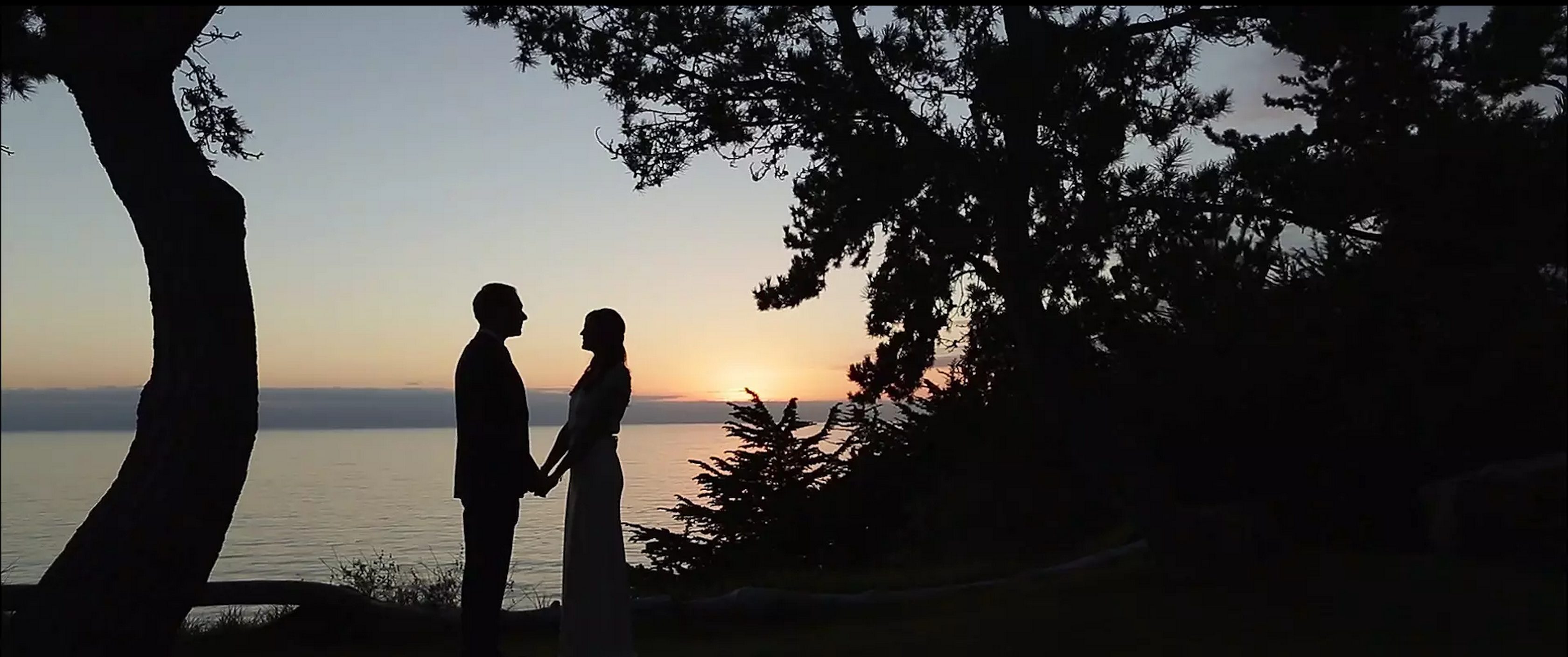 Paion Big Sur Wedding Videographer