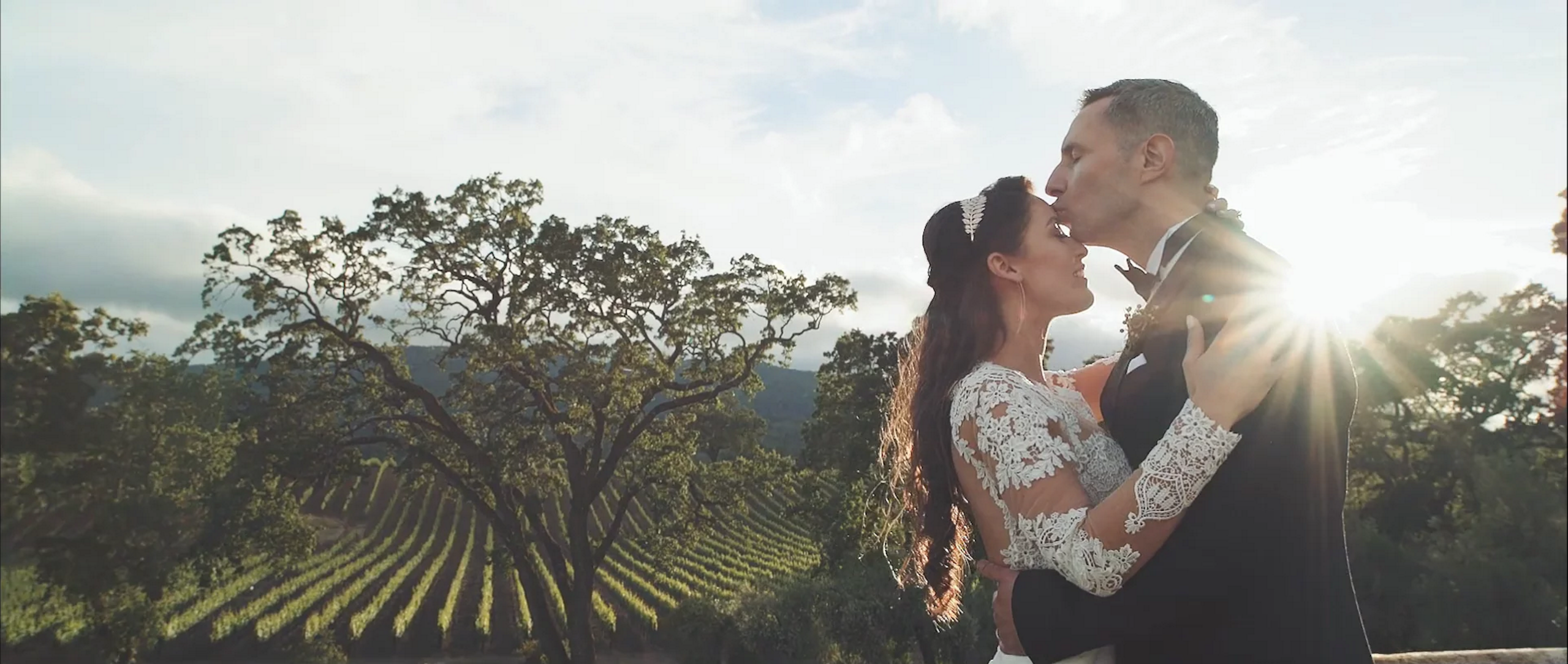 nyla ned sonoma br cohn winery wedding videogarpher
